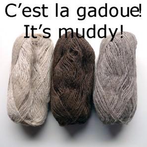 Coloris C'est la gadoue!