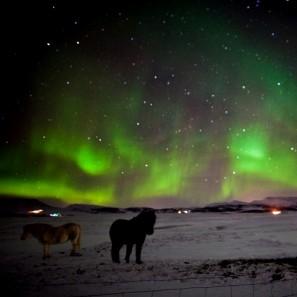 Tricot on Ice - Tricoteuse d'Islande - pull islandais lopi - voyage de tricot (18)