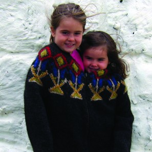 Mon pull lopi islandais (7)