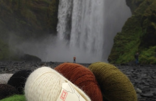 Gilitrutt Tvíband, 100% pure laine d'agneau islandais, fil dentelle retors, 2 brins (4)