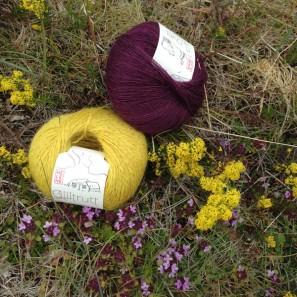 Gilitrutt Tvíband, 100% pure laine d'agneau islandais, fil dentelle retors, 2 brins (3)